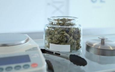 Za marihuanu niekoľkoročné väzenie?